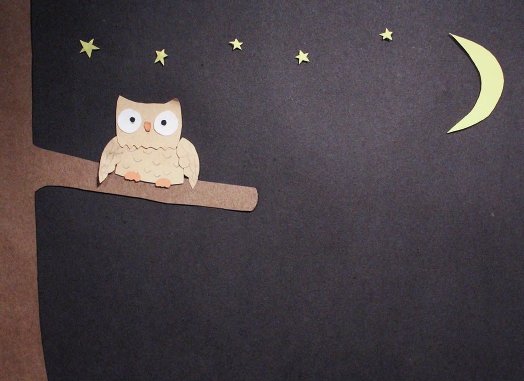 Sleepy Owl Stop Motion Animation