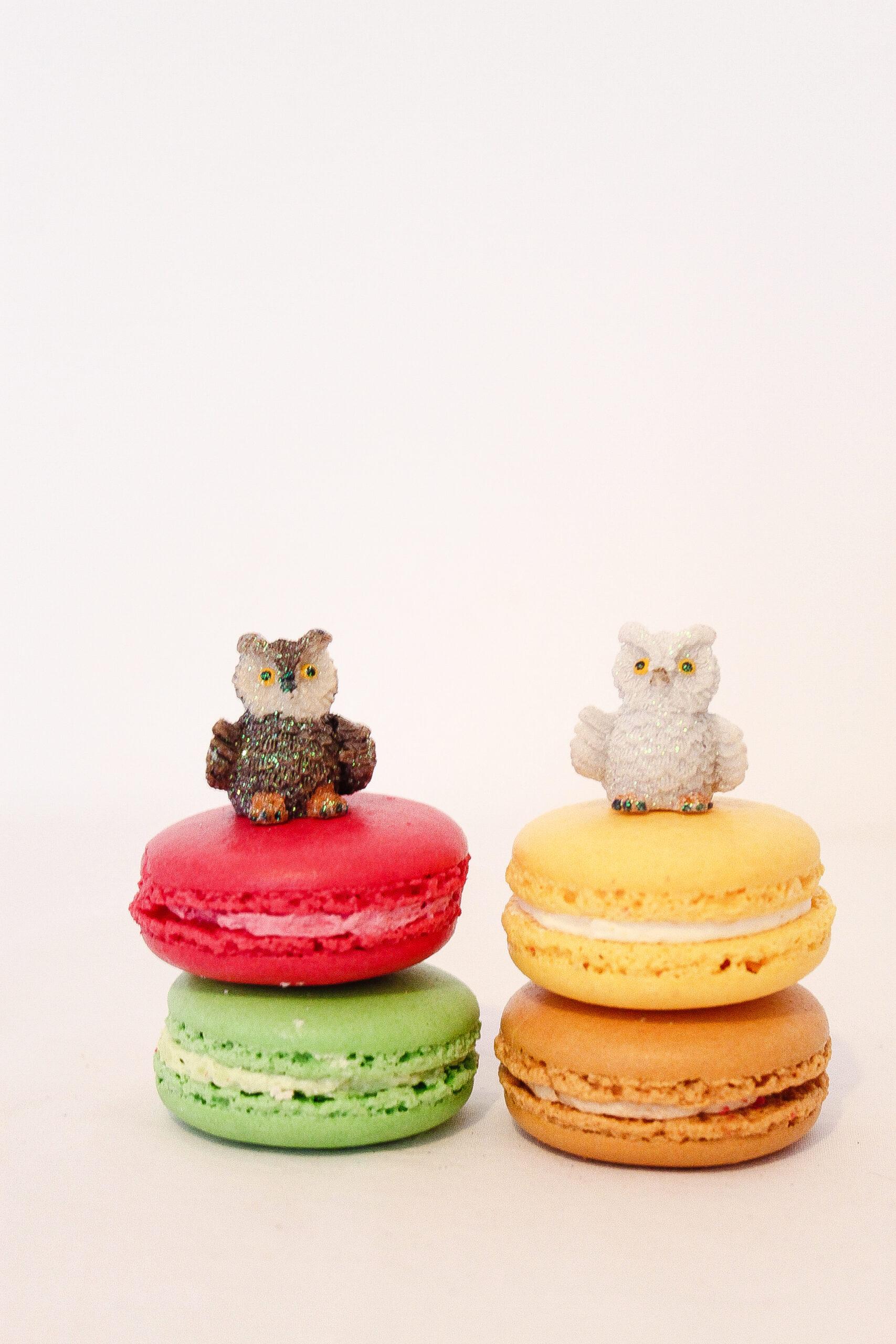 Owls & Macarons