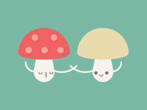 Cute Kawaii Mushrooms