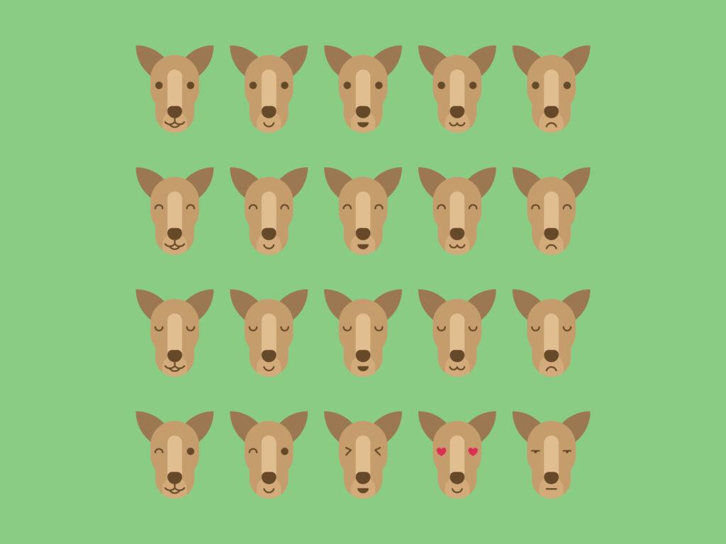 Kangaroo Emoji