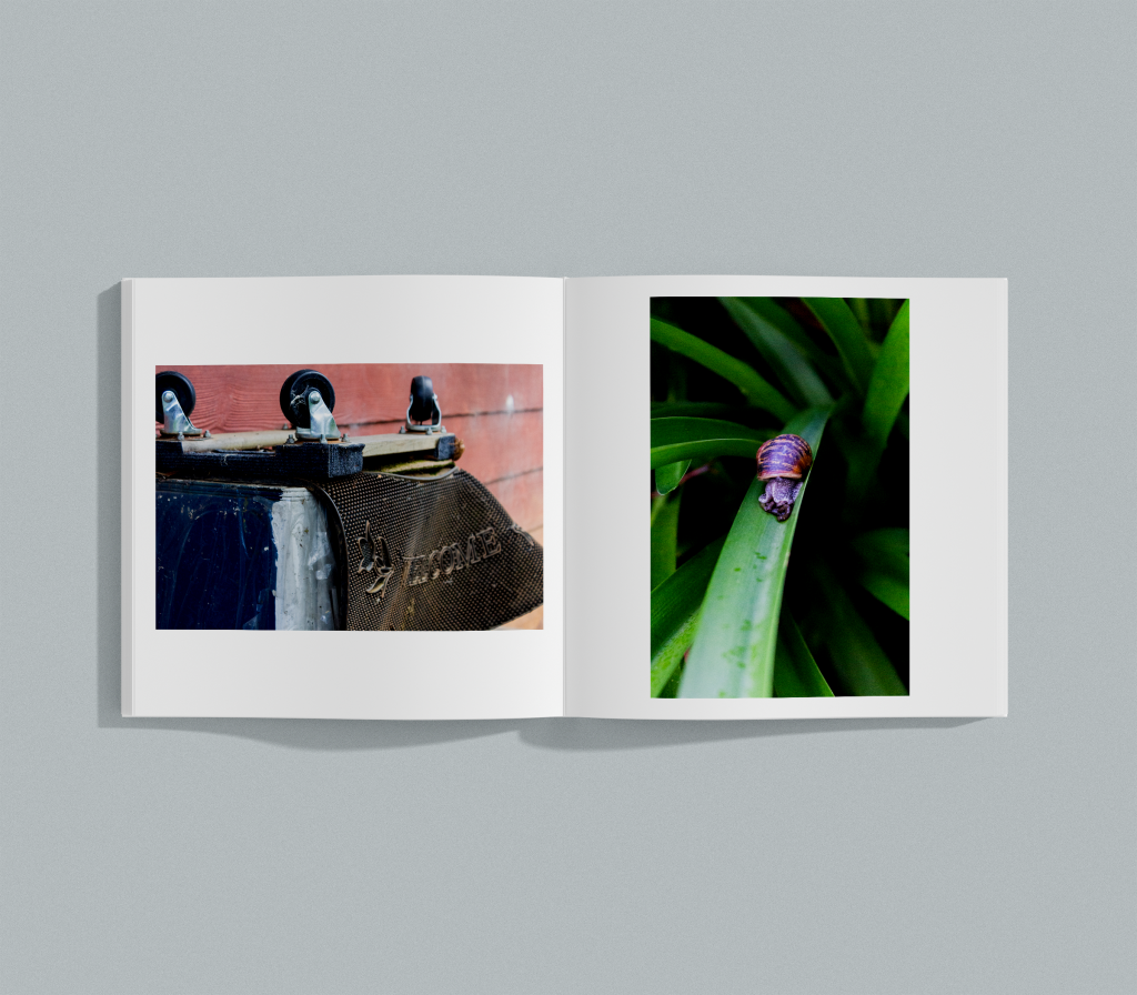 Hidden In The Everyday vernacular photography